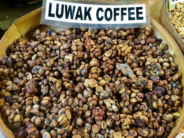 Café Luwak Bali